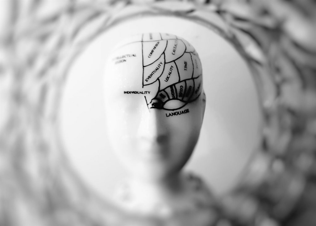Researchers Find how the Brain Conserves Memories Using MRI